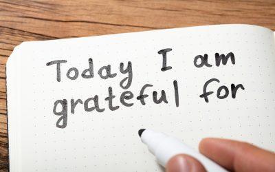 Mayumi Todd's Reasons for Gratitude for 2020